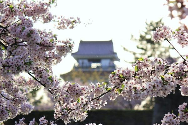 福島県会津