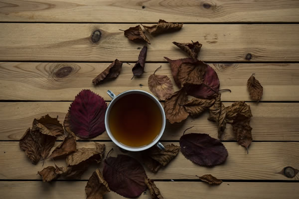 プーアル茶