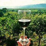 国産北海道ワイン20選。雄大な自然がまるごと味わえる北海道ワインが熱い