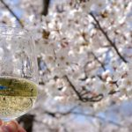 爽快感がたまらないおすすめスパークリング日本酒の魅力とおつまみ