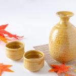 愛知県の酒器9選。瀬戸焼などお酒にあうグラス・骨董品の紹介